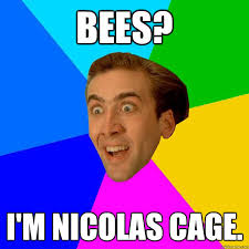 What Movie Is The Nicolas Cage Meme From - what movie is the nicolas cage meme from 28 images nicolas cage