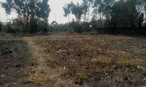 vacant land plot for sale in karen