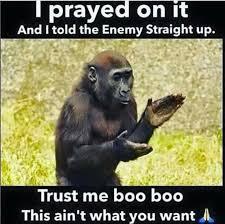 Funny Gorilla Meme - new gorilla protein cartoon funny wallpaper site wallpaper site