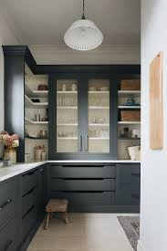black kitchen pantry cupboard black pantry cabinets with brass grille doors transitional