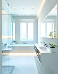 Green And White Bathroom Ideas by Apartments Modern White Bathrooms Archaicfair White Bathroom
