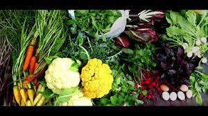 kichen gardening sardiun ki sabzian by dr ashraf sahibzada video
