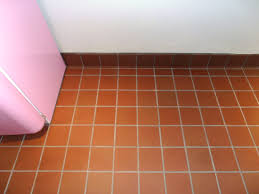 Nautolex Vinyl Marine Flooring by Quarry Tile Flooring Flooring Designs