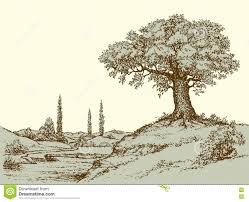 Oak Tree Drawing Vector Landscape Oak Tree On The Hill Stock Vector Image 76830043