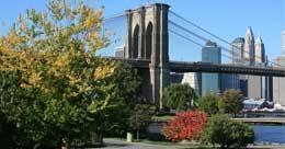 ny tourism bureau york city tourist guide nyc tourism travel information