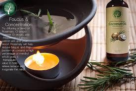 amazon com organic fractionated coconut oil 100 pure u0026 natural
