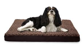 Foam Dog Bed Deluxe Memory Top Ultra Plush Furhaven Pet Products