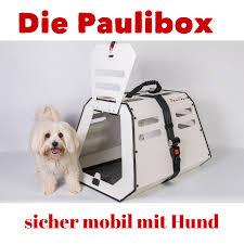 Tierarzt Salzgitter Bad Hundebox Für Den Rücksitz Crashgetestet Www Paulibox De Hunde
