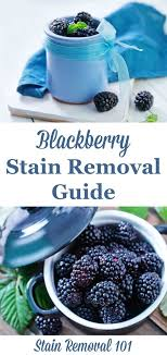 upholstery stain removal the 30 best images about laundry on upholstery carpets