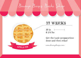 37 Inches In Cm Week By Week Bump Boxes Bump Boxes Pregnancy Subscription