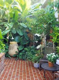 small yard u0026 small garden landscaping ideas tropical plants