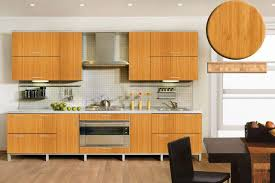Best Kitchen Cabinets For The Money by Bamboo Kitchen Cabinets Creative Home Designer
