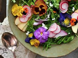 Salad With Edible Flowers - edible flower recipes for salads cakes jam and more travis