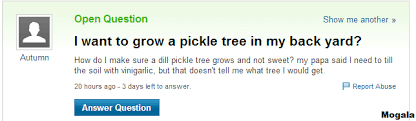 pickle tree
