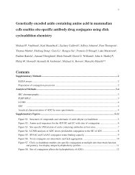 genetically encoded azide containing amino acid in mammalian cells