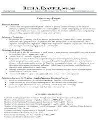 veterinary assistant resume veterinary resume sles veterinary