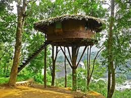house plans treehouse plans for inspiring unique rustic home