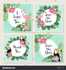 vector tropical cards set stock vector 565185907