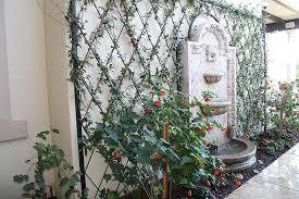 pergola with trellis a trellis or a pergola get to know garden structures build realty