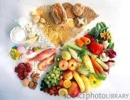 food lover u0027s diet diet of the day