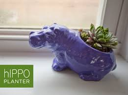 animal planter 145 hippo planter make great