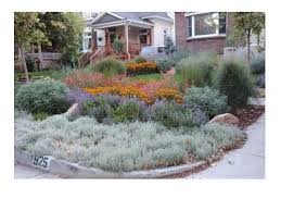 why waterwise landscapes matter