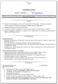 Curriculum Vitae Resume Samples by Professional Curriculum Vitae Resume Template For All Job