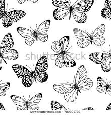vector illustration black white stock vector 708727405
