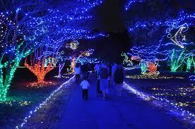 norfolk botanical gardens christmas lights 2017 norfolk botanical garden s million bulb walk nov 18 25 2015
