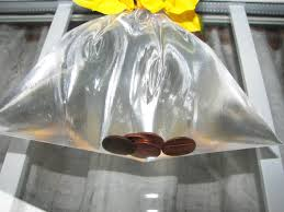 get rid of houseflies pennies in bag youtube