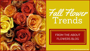 Fall Flowers Fall Flower Trends