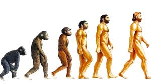 10 unsolved mysteries of evolution youtube