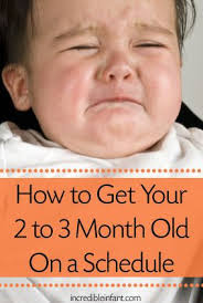 best 25 2 month baby ideas on 1 month baby 4