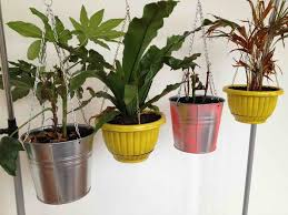 Wall Plant Holders Indoor Wall Plant Holders Home Design Ideas
