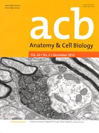 cell biology and anatomy image collections human anatomy learning