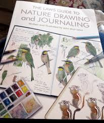 sketching in nature john muir laws u0027 laws guide to nature drawing