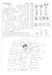 12 best exercise images on pinterest vocabulary worksheets body