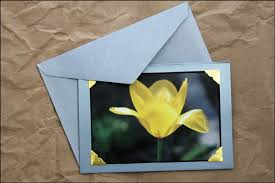greeting cards with photos and some pictures of our flowers