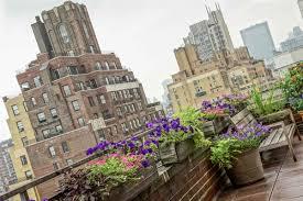 Urban Home Victoria Gardens - garden design new york city
