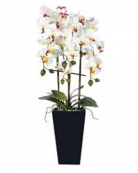 Artificial Orchids Artificial Orchids Orchid Plants U0026 Flowers In Pot Vase U0026 Bowl