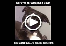 Meme Questions - meme free funny witty ecards wititudes