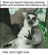Funny Coffee Memes - coffee memes brew unlimited