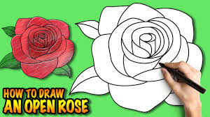 how to draw an open rose easy step by step drawing tuturial