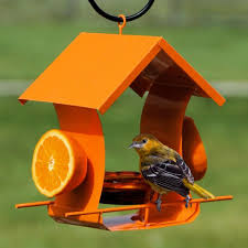 five feeding tips for attracting the birds you love for summer