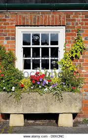 stone trough planter stock photos u0026 stone trough planter stock