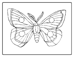 cool butterfly coloring pictures pefect color 6967 unknown