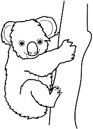 coloring koala coloring animal coloring pages koala