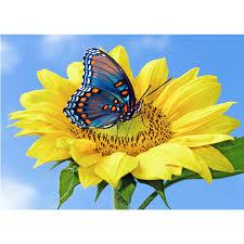 embroidery handicrafts sunflower butterfly 5d diy