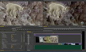 tutorial adobe premiere pro cc 2014 revealing the next wave of innovation in pro video apps creative