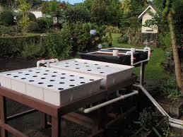 triyae com u003d backyard aquaponics greenhouse various design